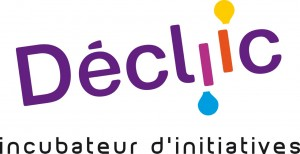decliic-logo-2013-cmjn